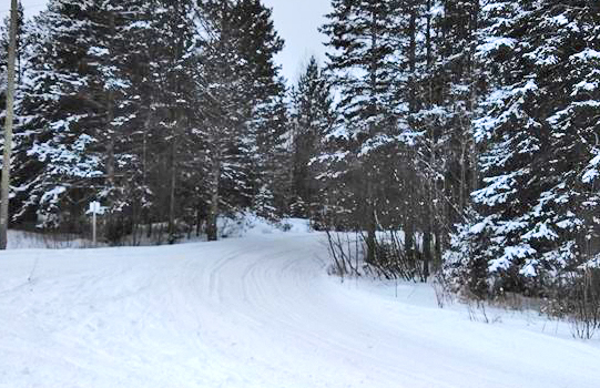 TASA Trails | About TASA | Tahquamenon Area Snowmobile Association | Newberry MI Snowmobiling